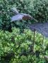 Flying Hummingbird Balancer