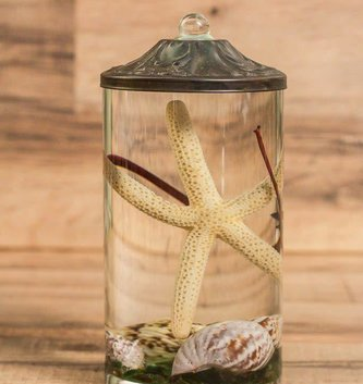 Seashell Lifetime Candle (9-Styles)
