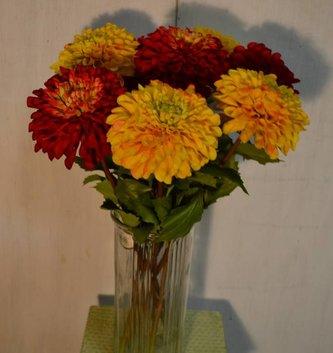 Garden Dahlia (3 Colors)