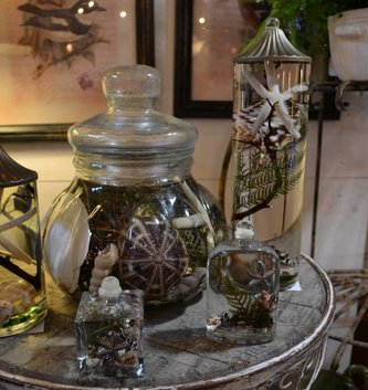 Seashell Lifetime Candle (6 Styles)