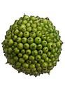 Green Berry Ball