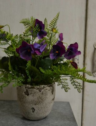 Custom Pansy Arrangement