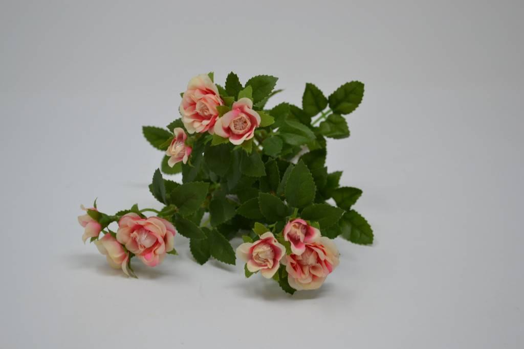 Mini Rose Bush (3 Colors)