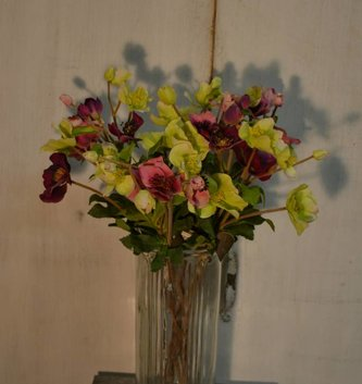 Christmas Rose Spray (3 Colors)