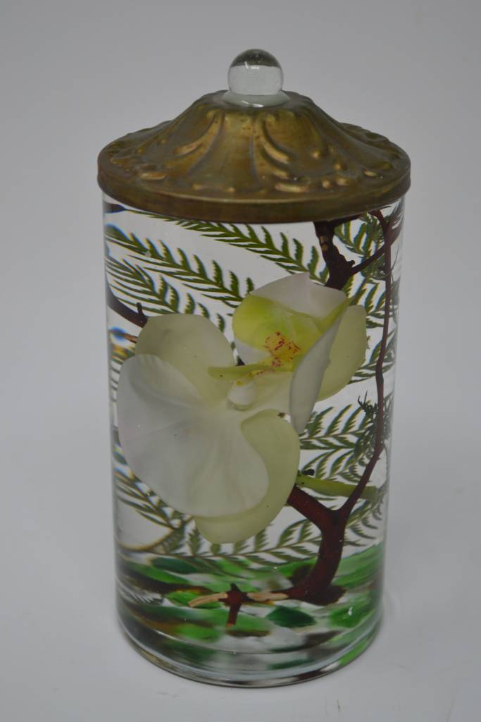 Phalaenopsis Orchid Lifetime Oil Candle