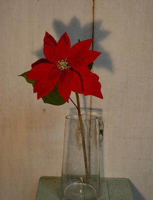 Velvet Poinsettia Stem (2 Colors)