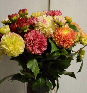 Small Dahlia (5 Colors)