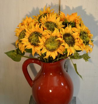 Short Stem Sunflower