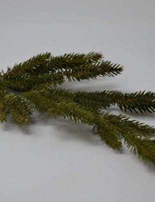 Black Spruce Pine Spray