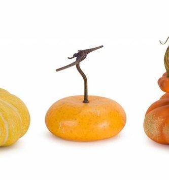 Fall Harvest Squash (3 Styles)