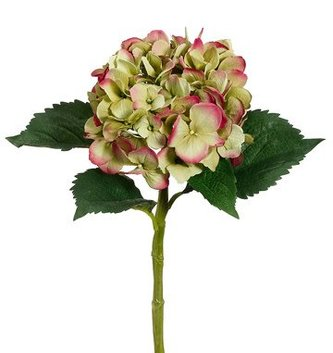 Garden Fresh Hydrangea (5-Colors)