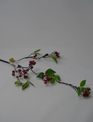 Snowberry Curly Branch