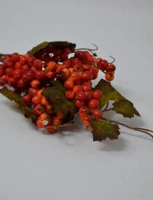 Leaf Berry Spray