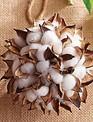 Cotton Pod Ball Ornament