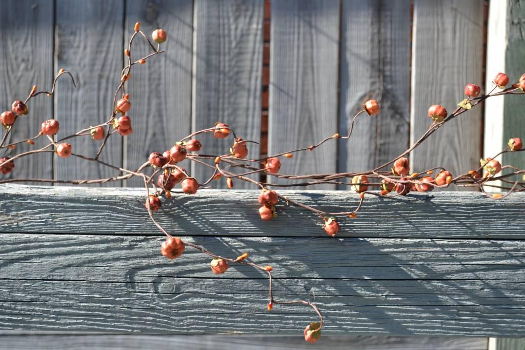 6' Wispy Twig Mini Pumpkin Garland