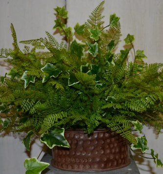 Custom Lace Fern and Ivy Arrangement