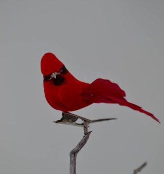 Clip-On Mini Cardinal