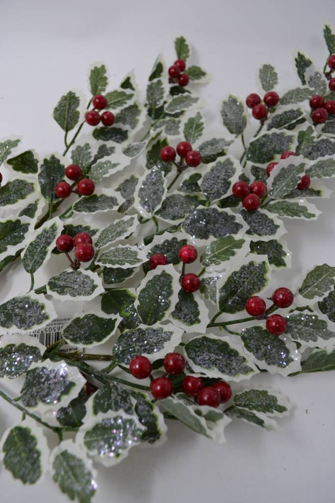 Frosted Holly Spray