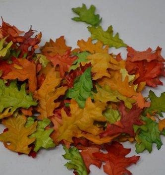 Bag of Mini Oak Leaves