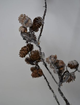 "34"" Winter Mini Pinecone Branch"