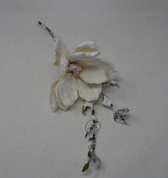 Snowy Japanese Magnolia Pick