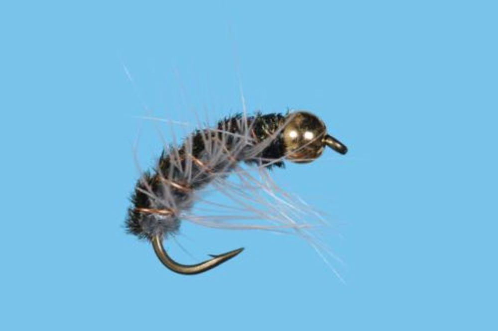 Poundmeister Cranefly