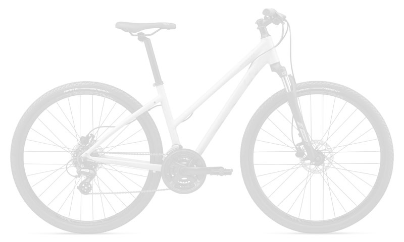 Giant 2021 Giant Roam E+ STA M Black