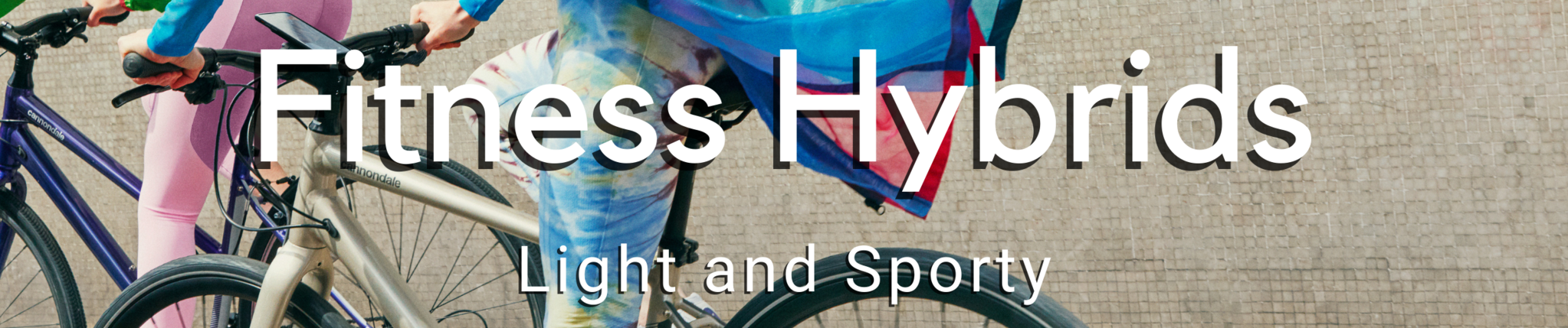 Fitness Hybrid