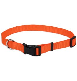 Coastal Pet Coastal Collars Orange