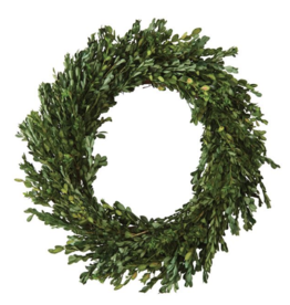 Mudpie BOXWOOD WREATH
