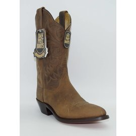 Dan Post Women's 	Comfort Cushion Western Boot DP22232