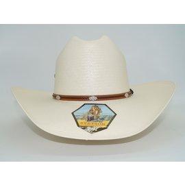 Stetson Alamo