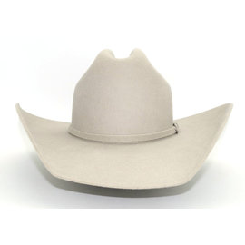 M&F Twister Dallas Western Hat Silver Belly