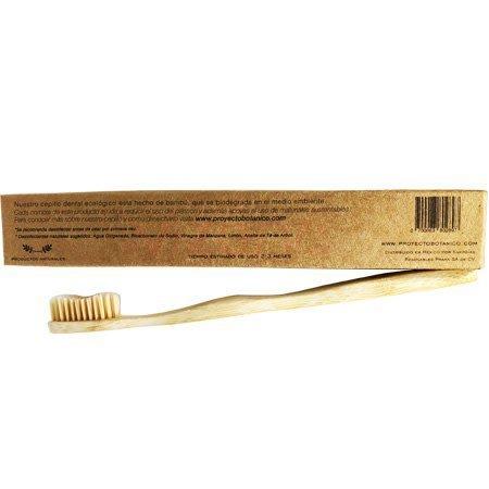 Cepillo Dental Ecológico Proyecto Botánico