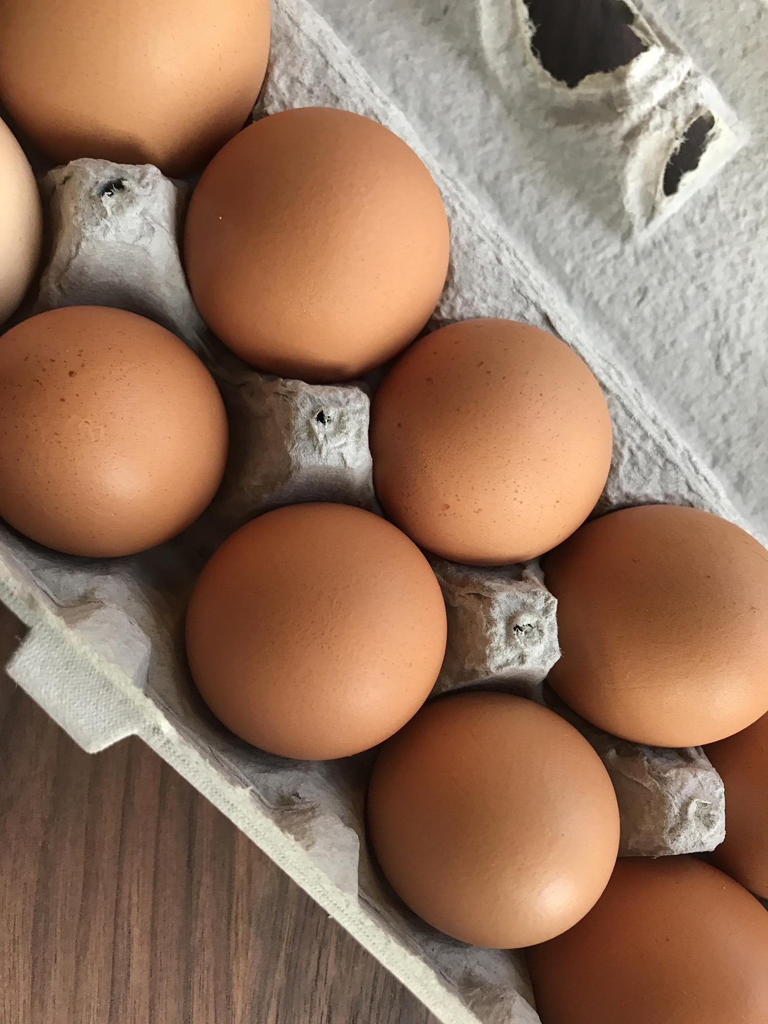 Pat's Pastured Chicken Eggs - dozen-1