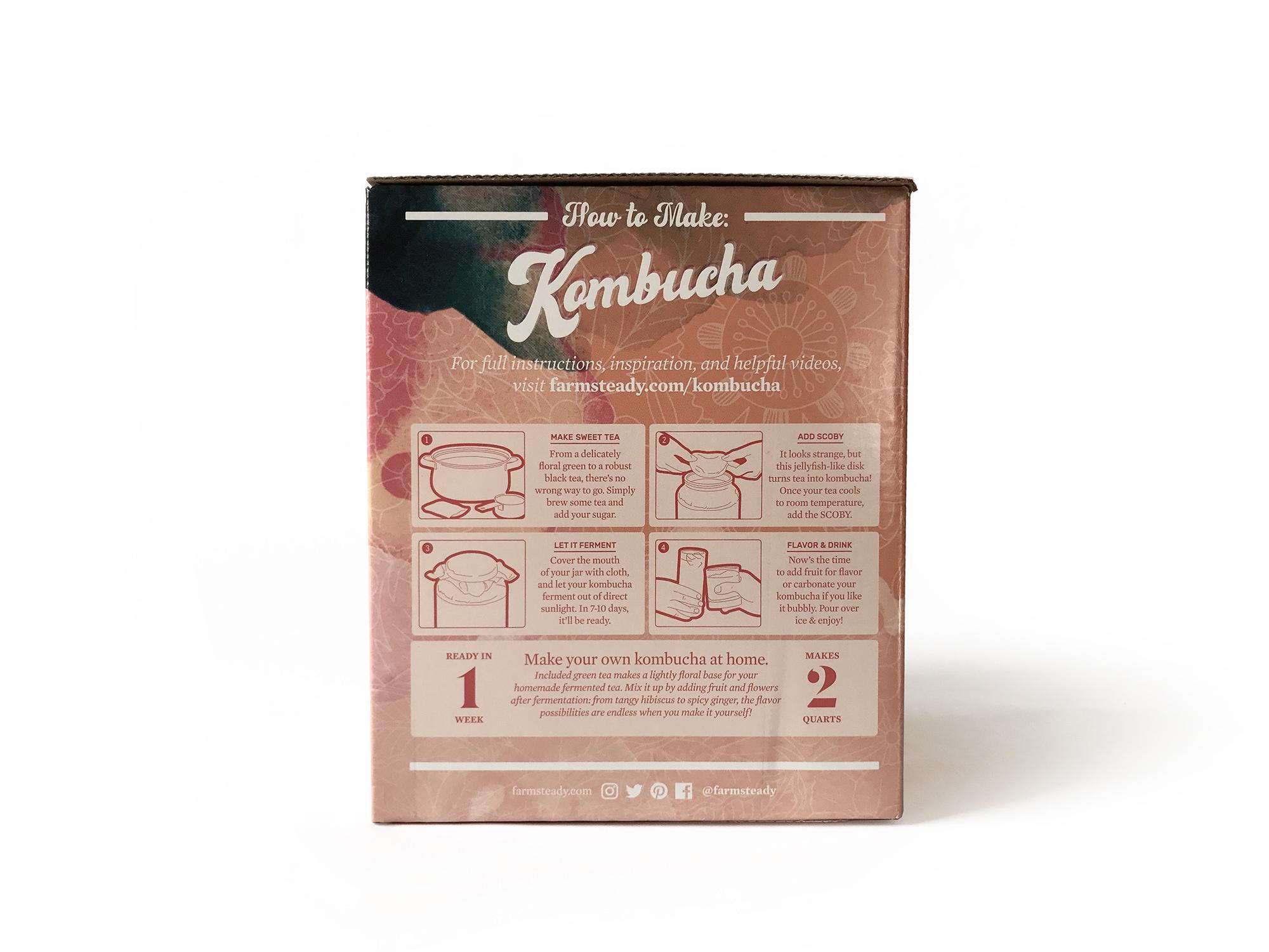 Farm Steady Kombucha Making Kit-2