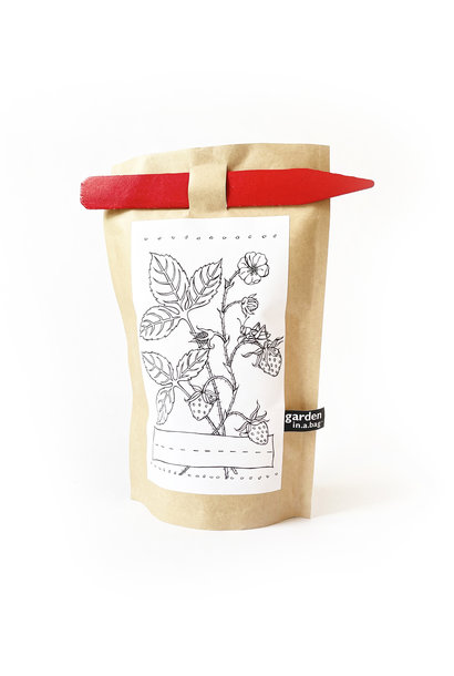 Potting Shed Creations Kid's Strawberry Garden in a Bag