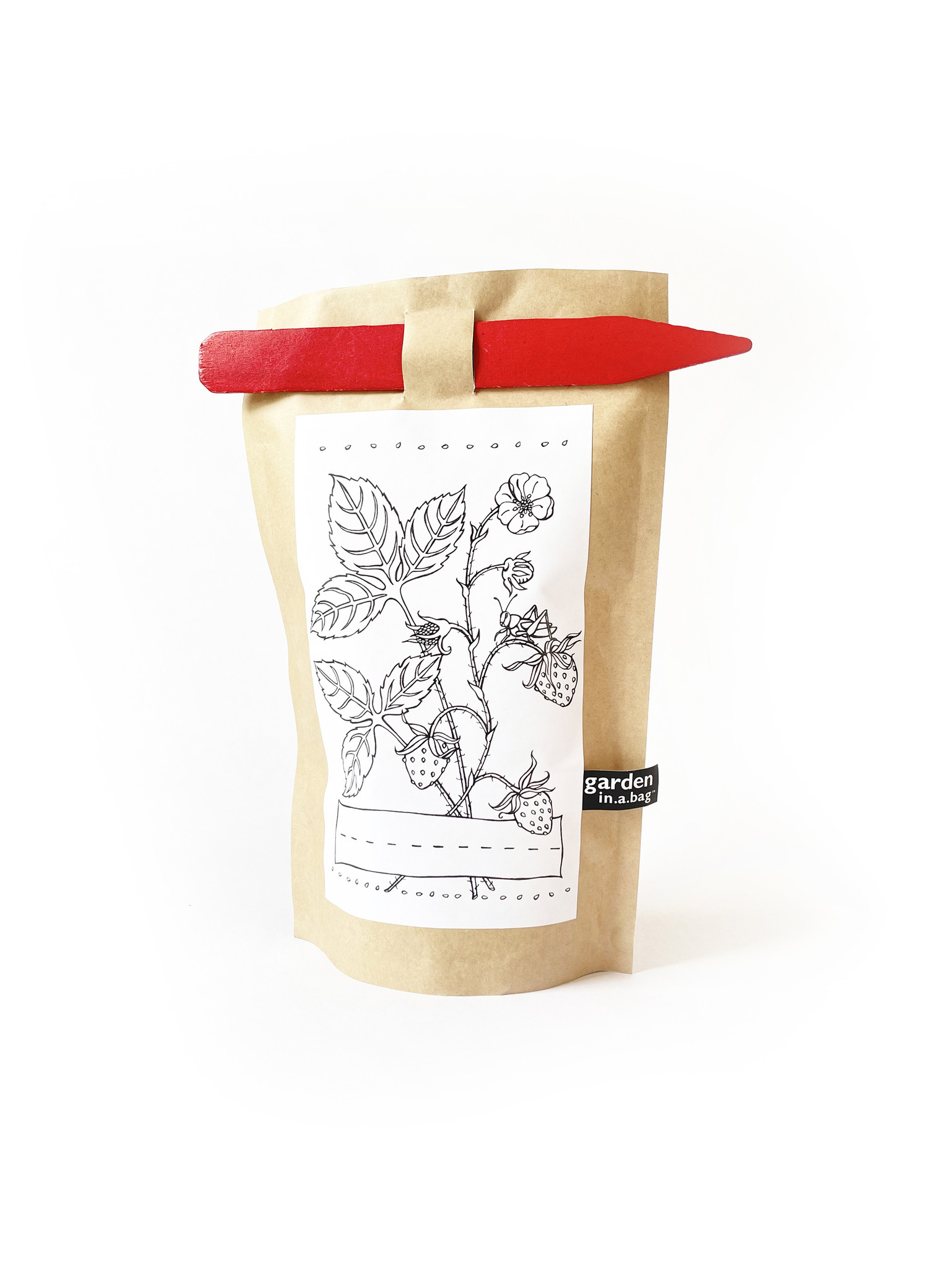 Potting Shed Creations Kid's Strawberry Garden in a Bag-1