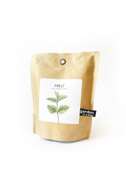 Potting Shed Creations Mint Garden in a Bag