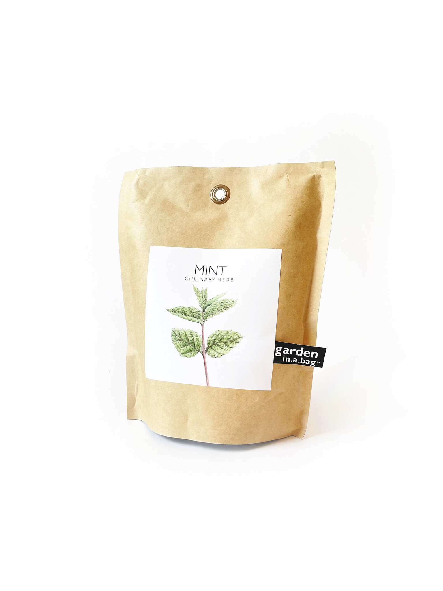 Potting Shed Creations Mint Garden in a Bag-1