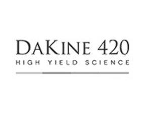 Dakine 420