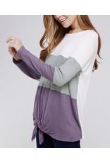 Purple Color Block Top