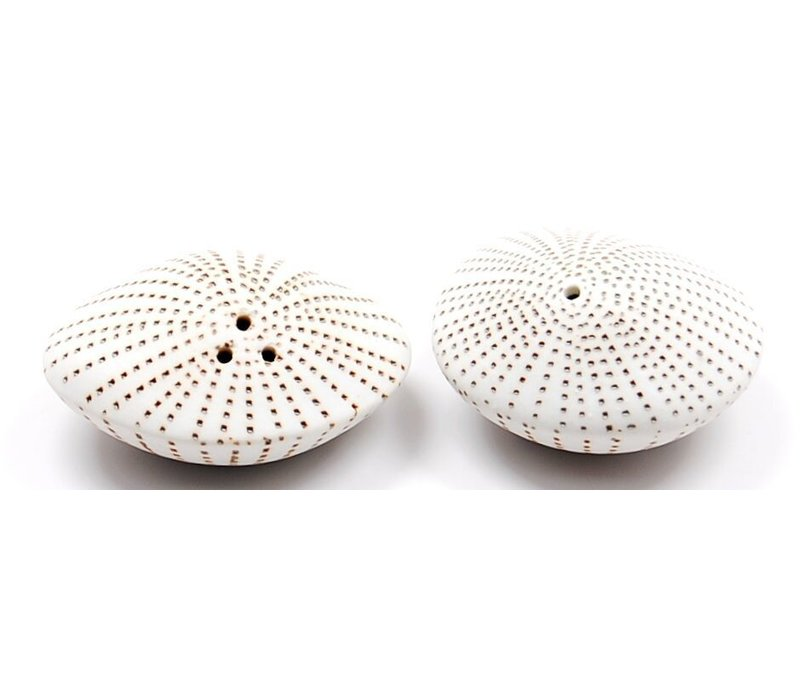 Brown Sea Shell Salt & Pepper Shaker