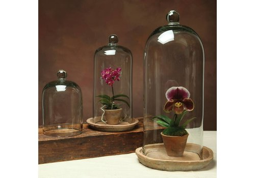HomArt Recycled glass dome - Medium