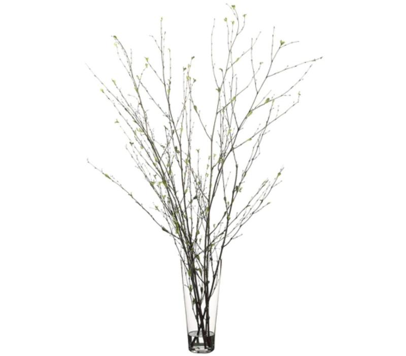 Tree Branches in Glass Vase