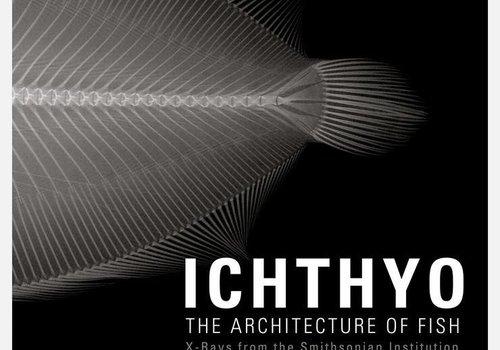 Ichthyo Hardcover