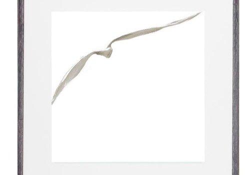 Sea Gull III Painting
