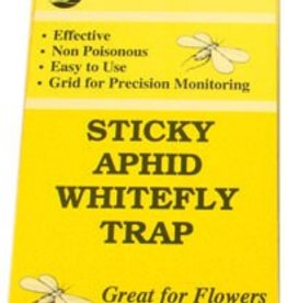 Seabright Laboratories Seabright Sticky Aphid White Fly Traps, 5 pack