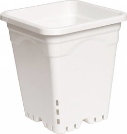 "Active Aqua 9"" x 9"" Square White Pot, 10"" Tall (Each)"