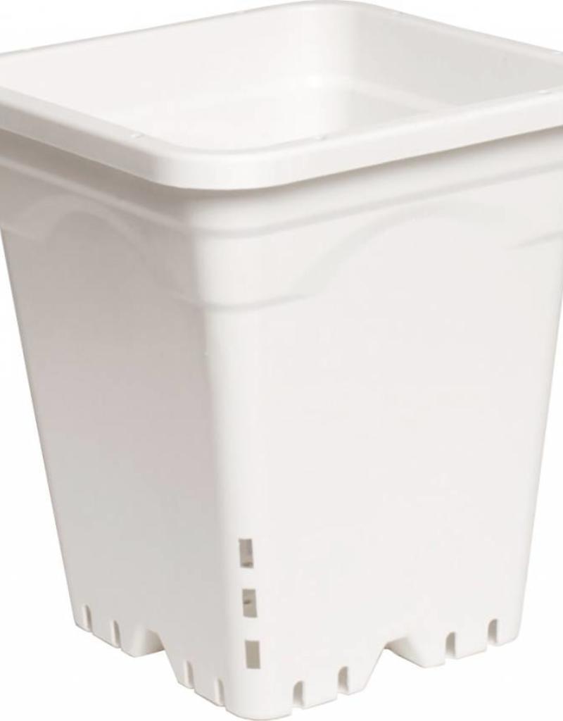 "Active Aqua 7"" x 7"" Square White Pot, 9"" Tall (Each)"